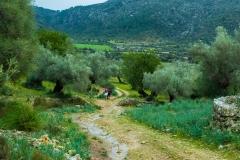 Camino de descenso hacia el Clot d'Almadrà