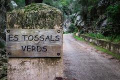 Entrada a Tossals Verds