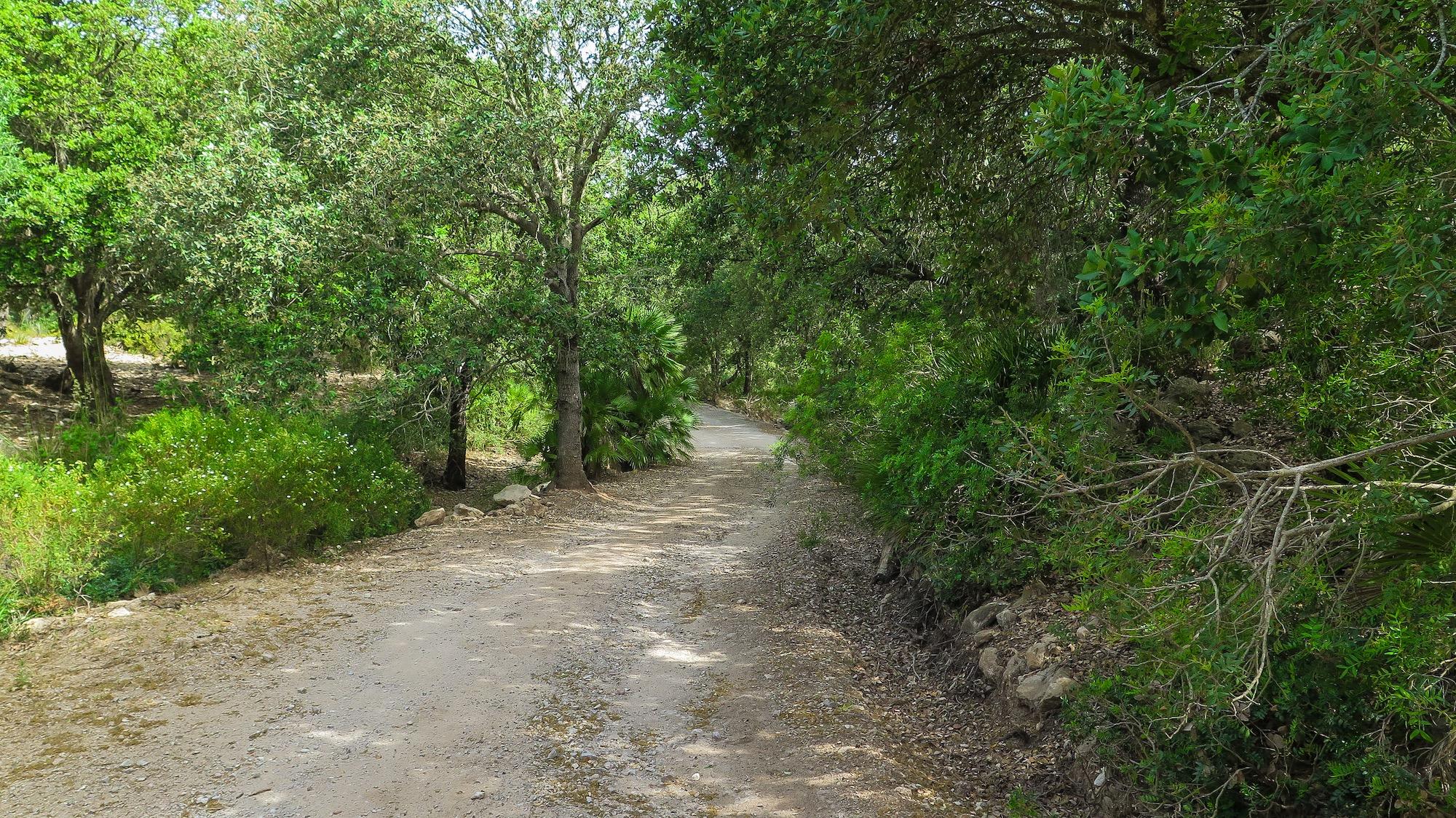 Parc Natural Llevant : Alqueria Vella, Arenalet, Camí Mondoi, Camí ...