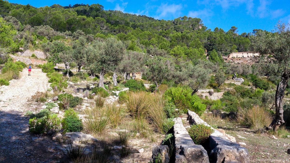 Canal de agua de la font de s'Abelló