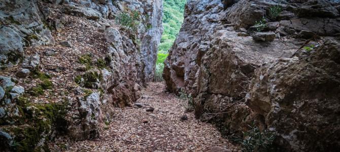 Puig de s'Alqueria (sa Gubia), Pas de sa Fesa y camí de Biniforani Vell