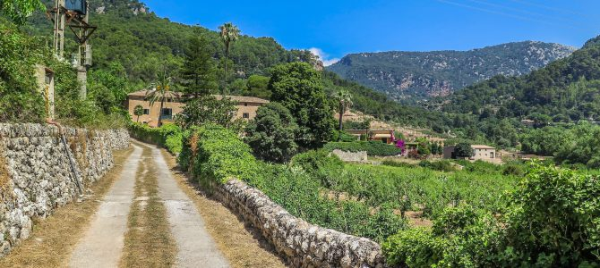 Estret Valldemossa, Puig des Boixos, Font dels Òbits y Son Brondo