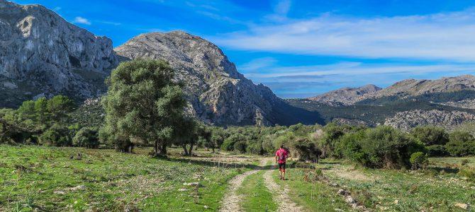 Camí de Fartàritx i Camí de El Ninot