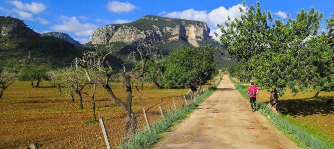 Lloseta, Mancor y Comuna de Biniamar