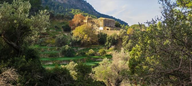 Camí vell d'Estellencs, Son Fortuny, Font de Dalt y Es Grau