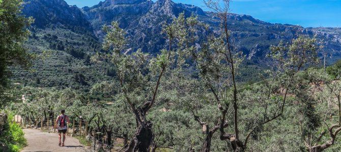 Vall de Sóller : Sa Capelleta, Costa de'n Nico, Fornalutx, Binibassi