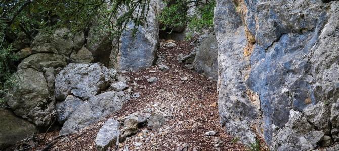Serra de Son Moragues por la Moleta de Pastoritx y el Pas de sa Regata