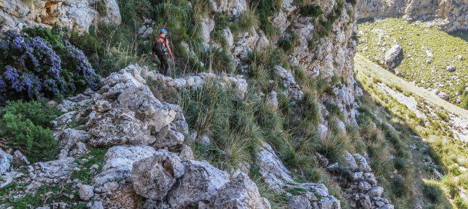 Vuelta al Puig Mayor por el Pas des Bous