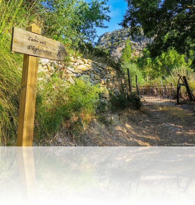 Camí vell d'Estellencs
