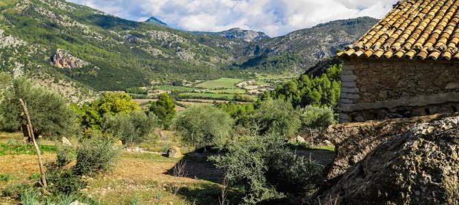 Vuelta al Puig de Sant Miquel por el Clot d'Almadrà