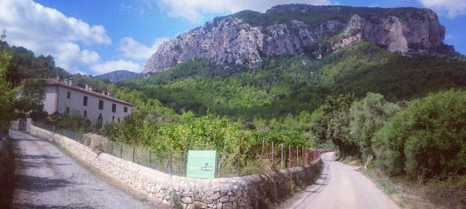 Puig d'Alcadena y Cova de s'Alfàbia desde Lloseta