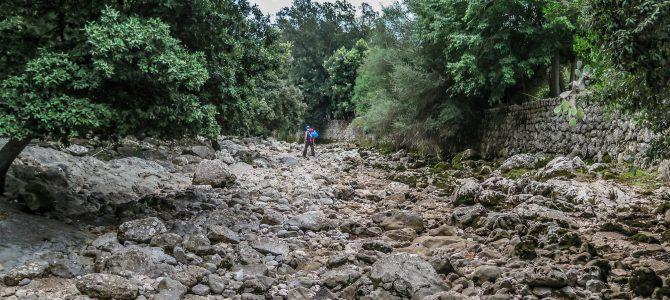 Volta Torrent de Lluc y Albarca