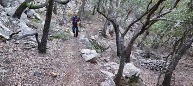 Volta per Deià : Camins de Ca'n Prohom i de Castelló