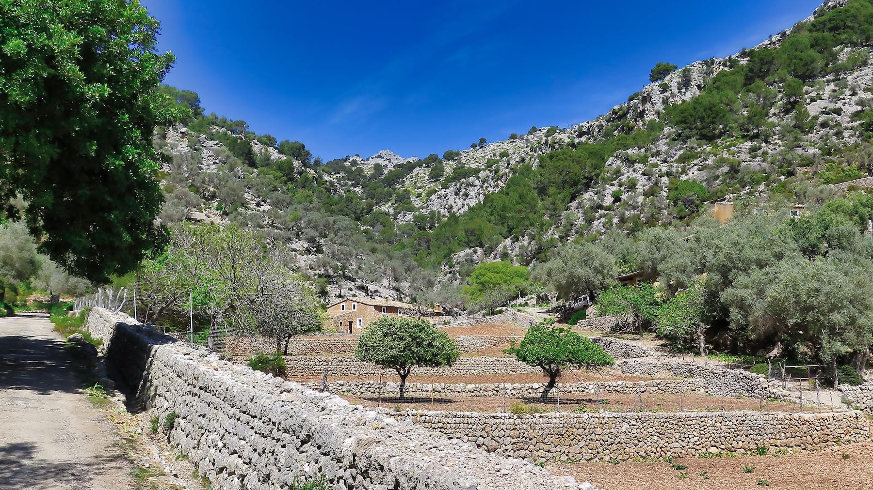 Puig dels Albellons y Pas de s'Herba Tendra