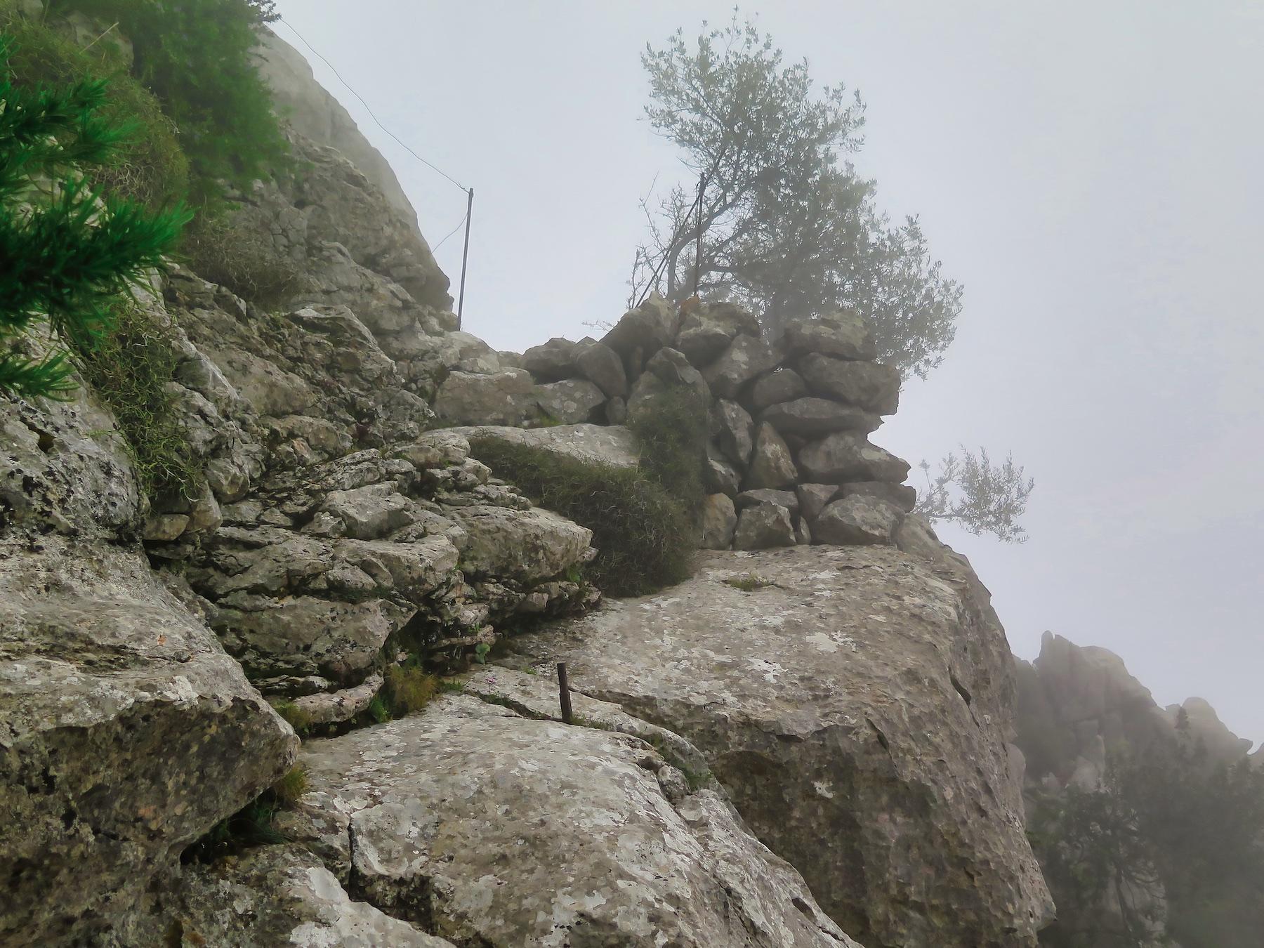 Serra d'Alfàbia per Camí dels Alous i el Pas Llis